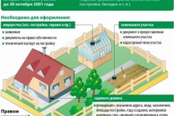Программа дачная амнистия - инфографика