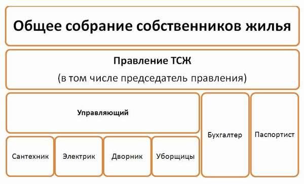 ТСЖ Восточное - Структура ТСЖ