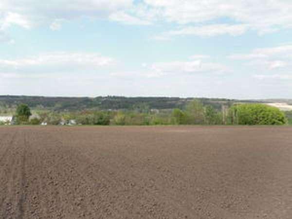 Как продать земельный пай - особенности продажи земли