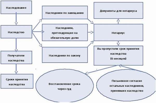 очередь наследования по закону схема