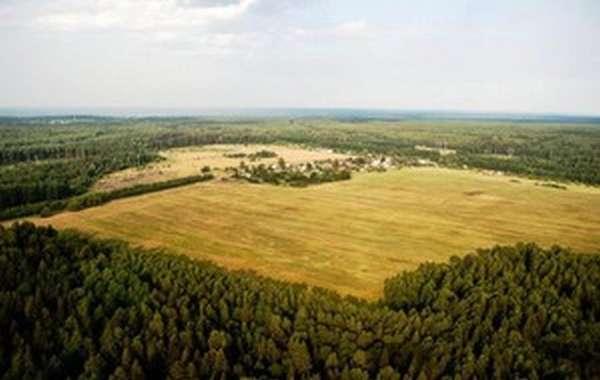 Купля-продажа земли сельскохозяйственного назначения
