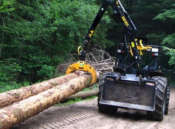 Регистрация договора аренды леса