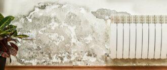 мокрая стена в квартире что делать