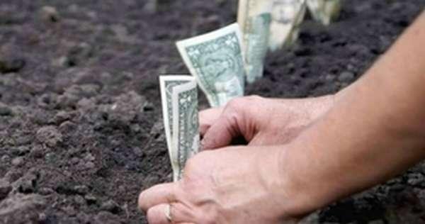 Как продать землю под сельхоз угодья