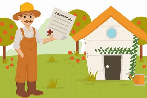 Как оформить землю в собственность в 2019 году