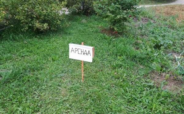 Требования земельным участкам