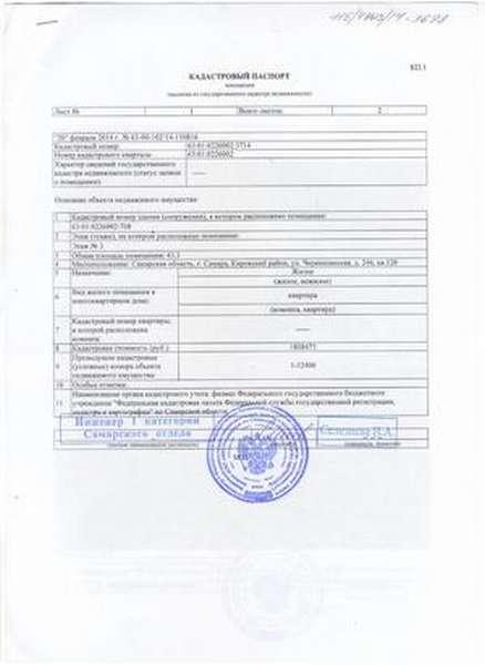 Кадастровый паспорт (первый лис
