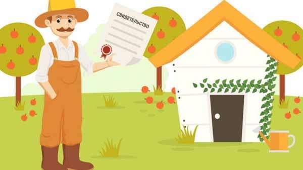 Этапы оформления дома по дачной амнистии в собственность